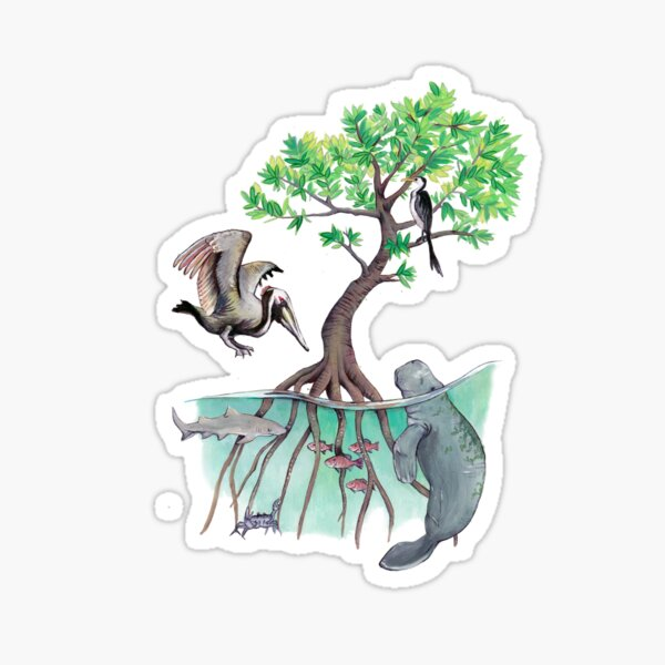 Mangroves Sticker