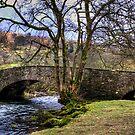 Bridge over the Rothay by Tom Gomez