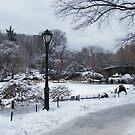 Central Park In Snow, New York City by lenspiro