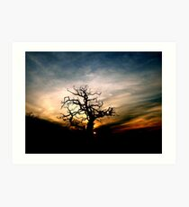 Silhouetted Art Print