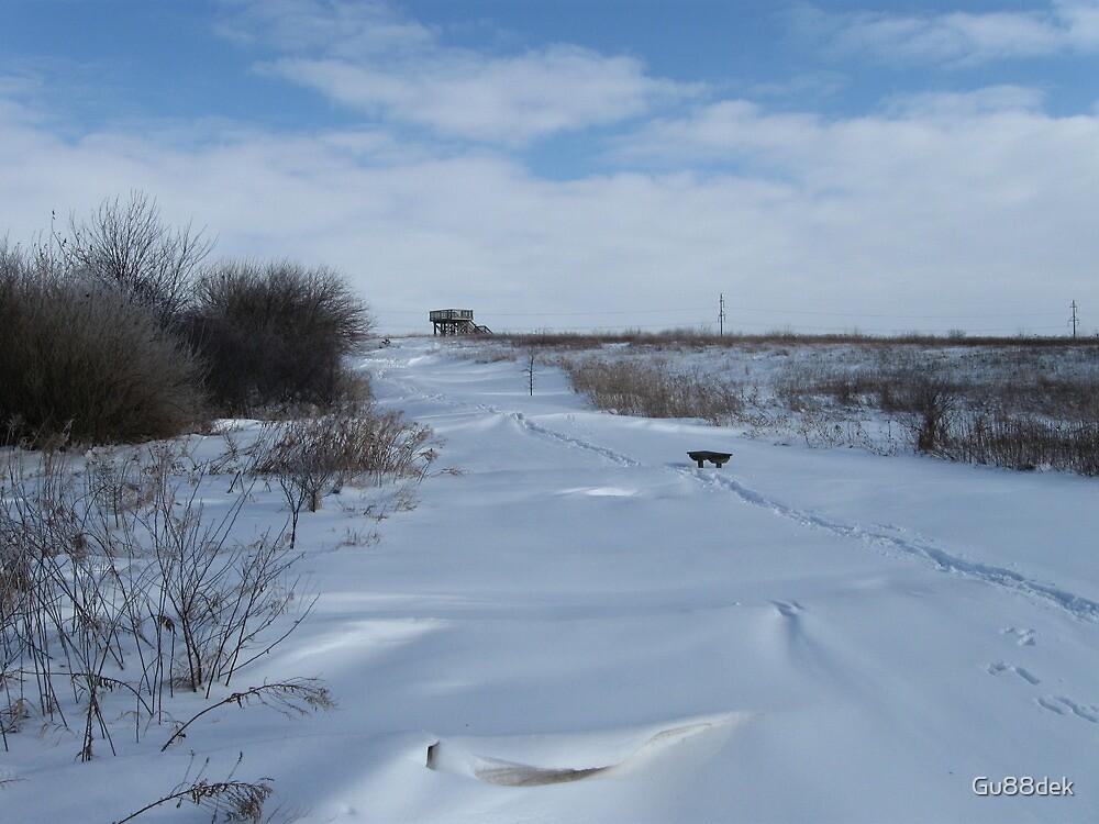 Path in the Snow by Gu88dek