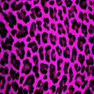 Purple Leopard Print  by brattigrl