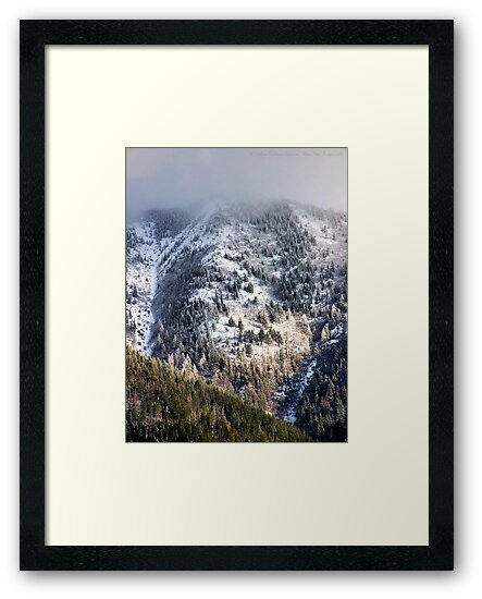 Cold Mountain by rocamiadesign