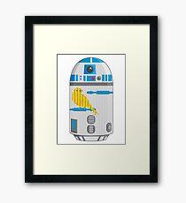 R2 Birdcage Framed Print