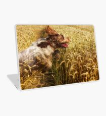 Brown Roan Italian Spinone Dog in Action Laptop Skin