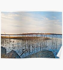 Worden's Pond - Series - NWb - Southern Rhode Island Poster