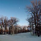 Snow on the Slope by Debra Fedchin