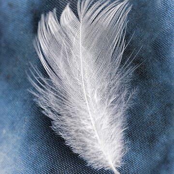 Feather II by HappyDesigner