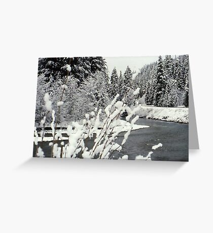 Winter at the Nooksack River Greeting Card