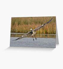 Heron 7 Greeting Card