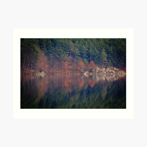 Rorschach Visits the Woods Art Print