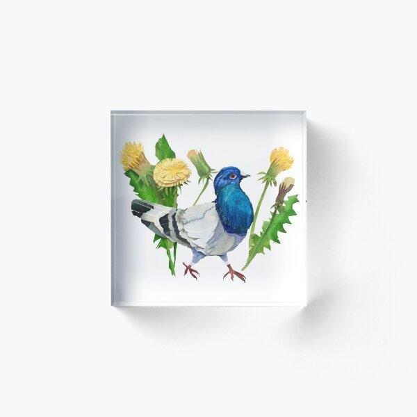 Dandelion Pigeon Acrylic Block