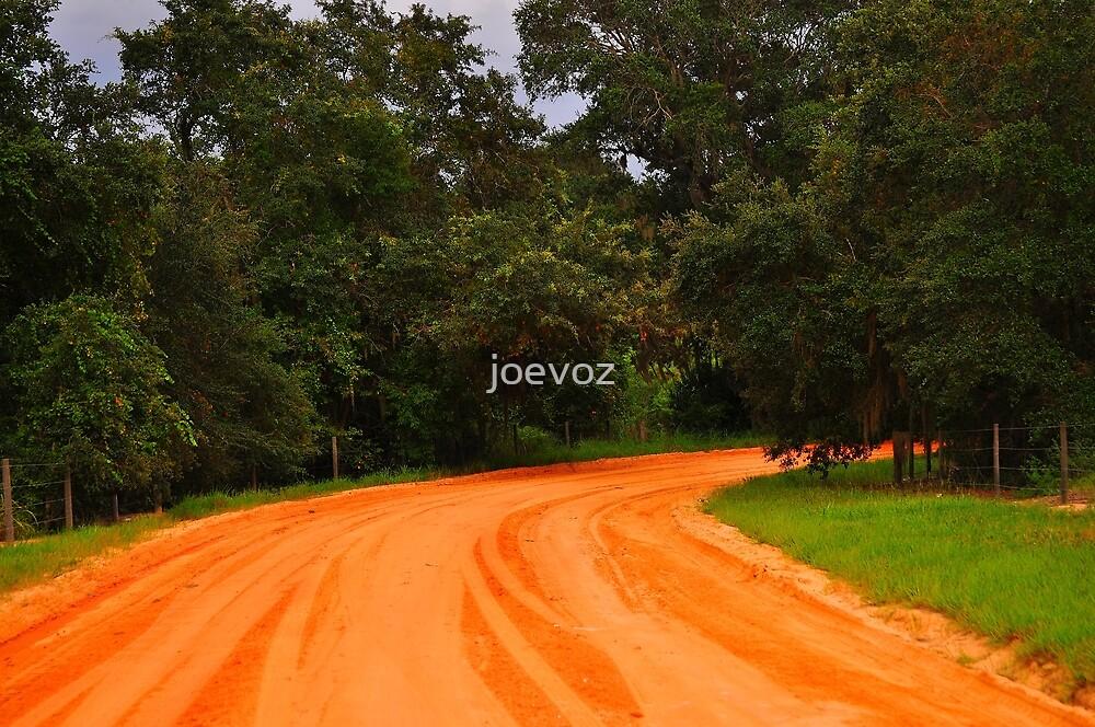 Dirt Road by joevoz