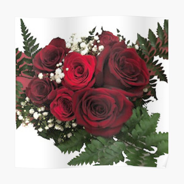 Red Rose Flower Pic  Poster