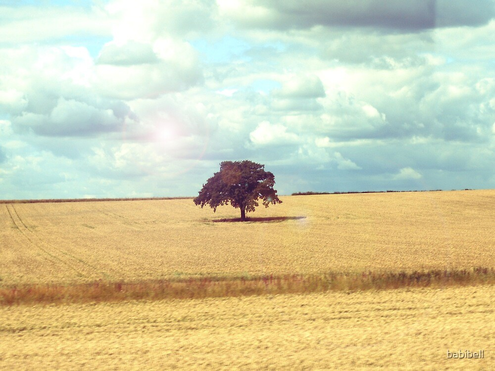 Lonely Tree by babibell