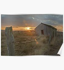 Shack on the Fence Line Poster