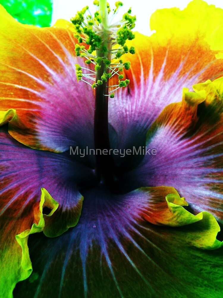 #12   A Different Kind Of Flower by MyInnereyeMike