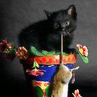 Rat Cat by billyboy