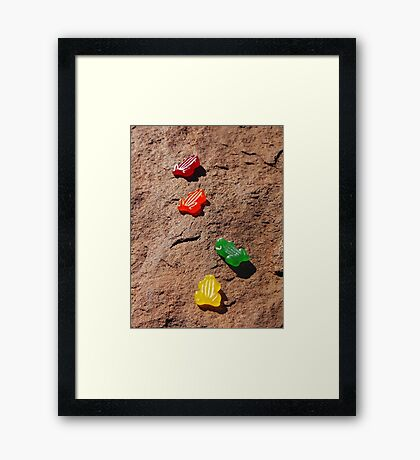'Bush Tucker' Framed Print