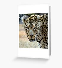 If looks could kill..... Greeting Card