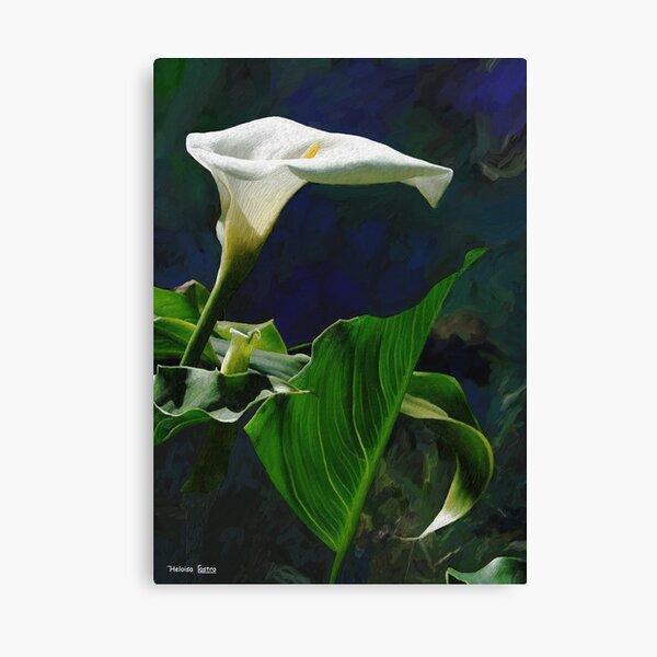 HC 29 Flowers Canvas Print