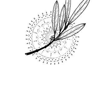 Aura Botanica 3 by markuskunschak