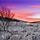Campsie Snowscape by Don Alexander Lumsden (Echo7)