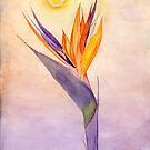 Bird of Paradise Flower by Anne Gitto