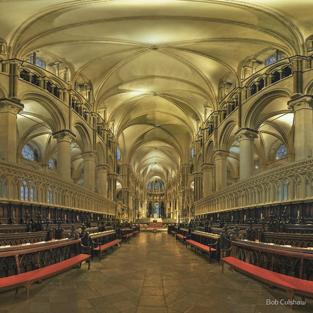 Canterbury Cathedral Choir 2 by Bob Culshaw