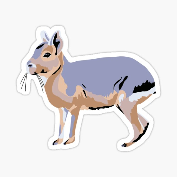 Patagonian Mara / Cavy Portrait Sticker