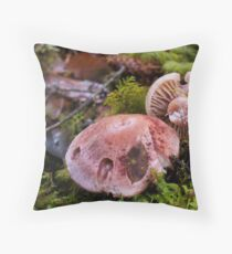More of Natures Beauty Throw Pillow