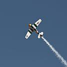 SNJ-5 - North American Aviation T-6 Texan by Buckwhite