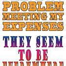 Meeting One's Expenses by Darren Stein
