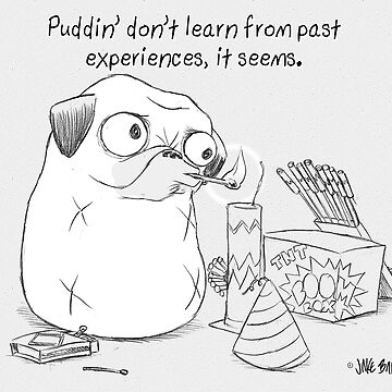 Puddin' don't learn from past experiences by PuddinDont