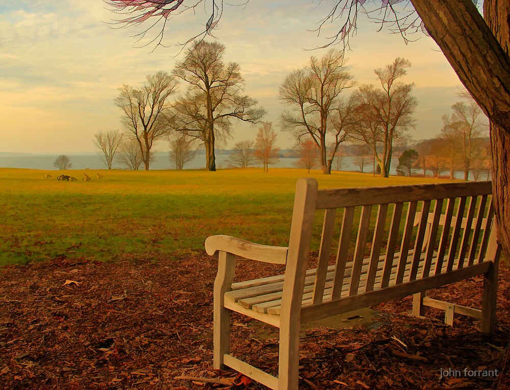 Another restful spot by john forrant