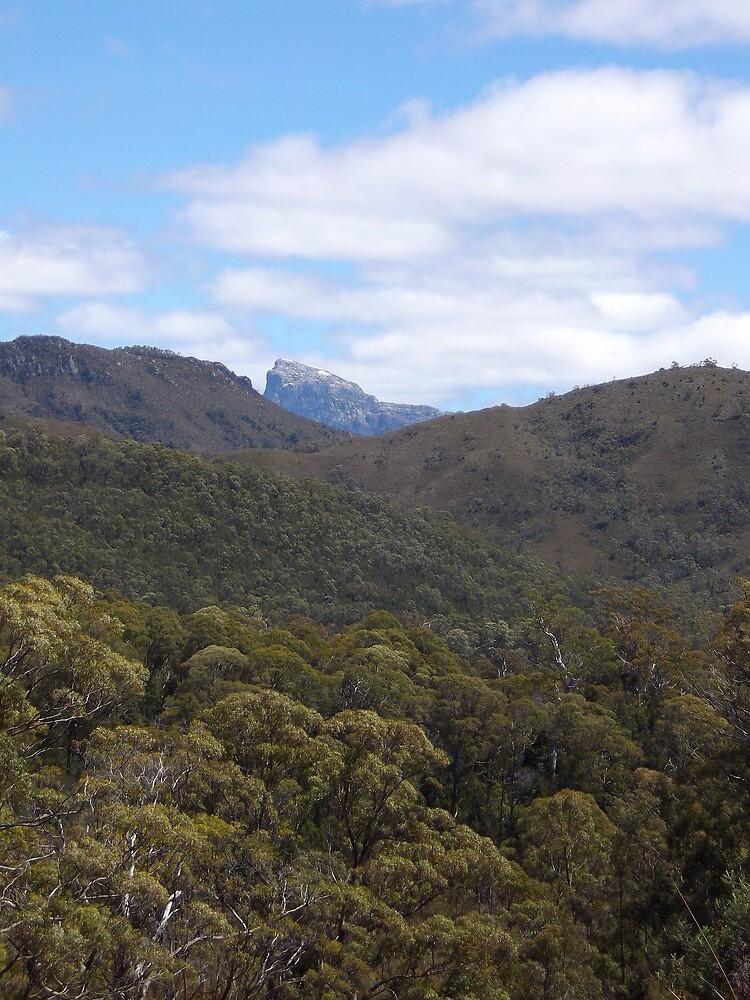 Frenchman's Cap - Tasmanian bush scene by gaylene