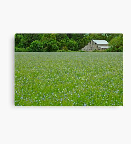 Willamette Valley Landscape Canvas Print