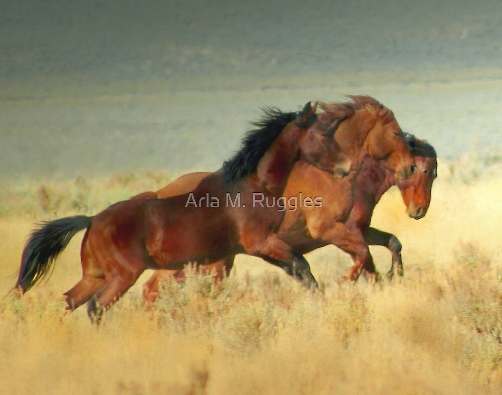 Band Of Brothers by Arla M. Ruggles