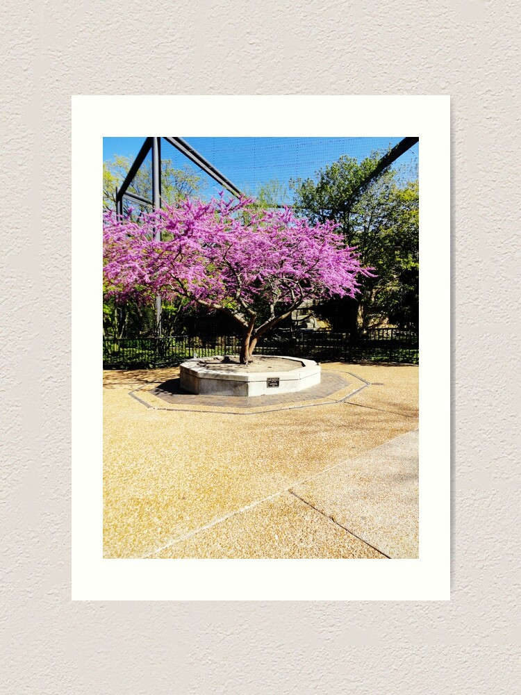Alternate view of Tree Of Purple Art Print