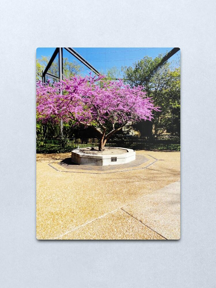 Alternate view of Tree Of Purple Metal Print