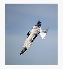 U Tern Photographic Print