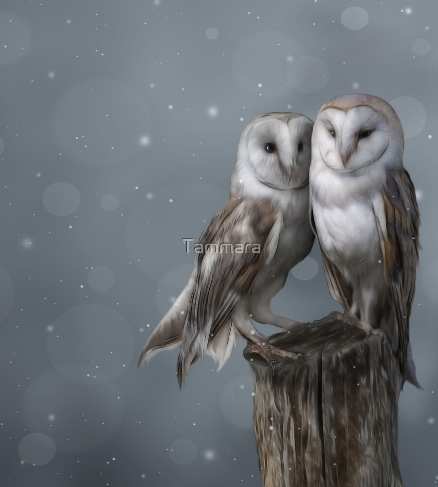 Silent Watchers by Tammara