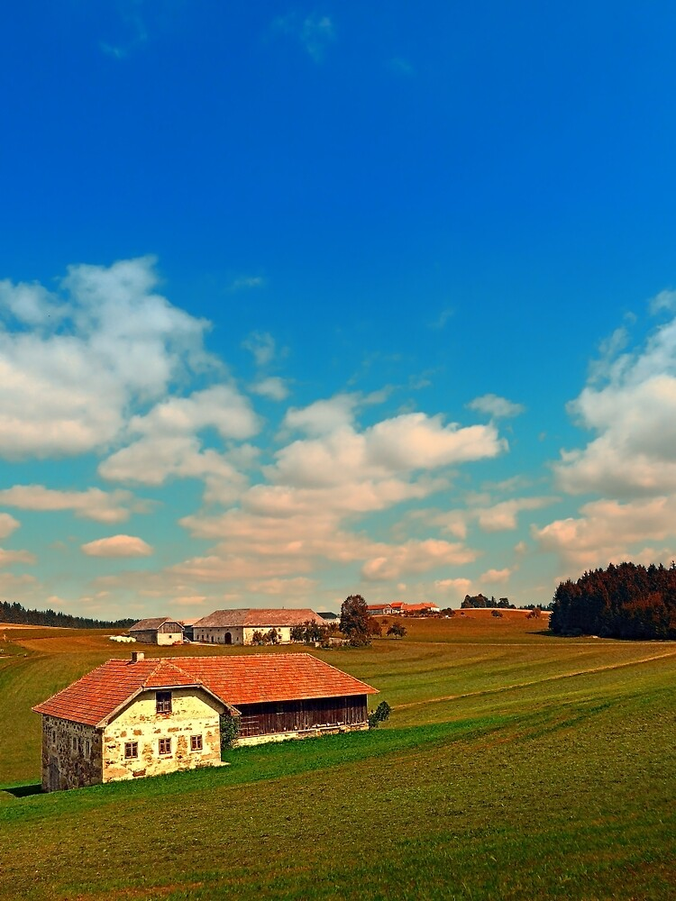 Countryside life with blue cloudy sky | landscape photography by Patrick Jobst
