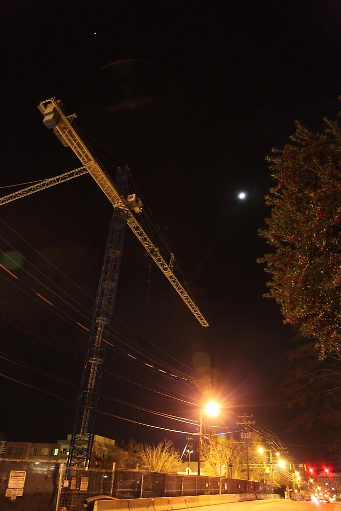 Chapel Hill Crane by DBGuinn