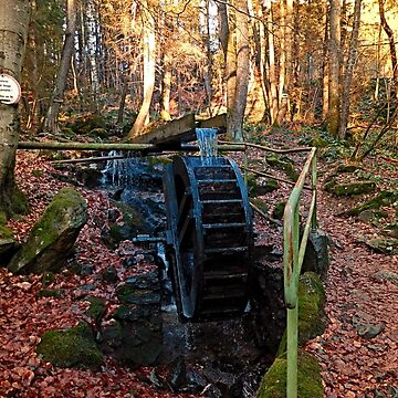 Water wheel in the wood | architectural photography by patrickjobst