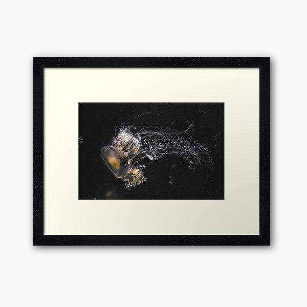 Flower Hat Jelly Framed Art Print