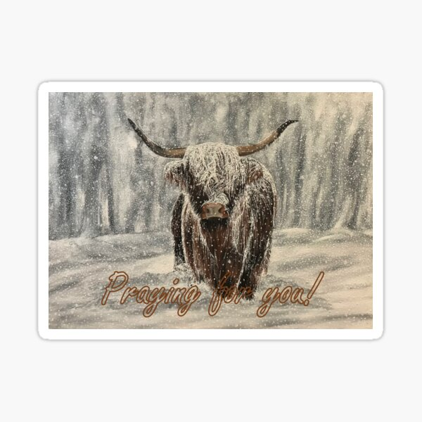 Snowy Highland Cow - Praying for You Card Sticker