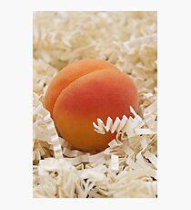 Apricot Photographic Print