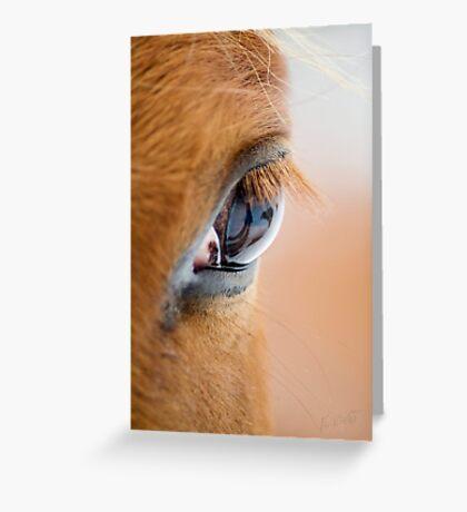 Equine Eye Greeting Card