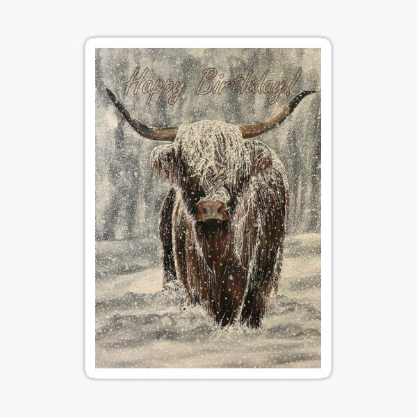 Snowy Highland Cow - Birthday Card Sticker